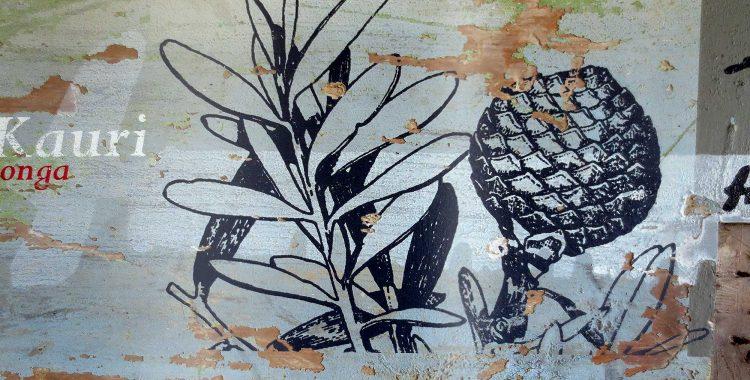 Kauri Taonga